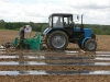 Закладка интенсивной плантации земляники во ВСТИСП