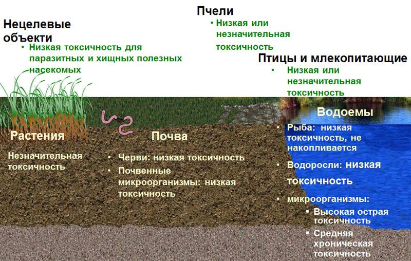 Влияние на окружающую среду