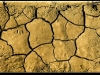 Растрескивание почвы от засухи