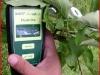 Измерение состояния листьев портативными приборами