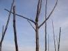 Проволчное приспособление для отклонения ветвей