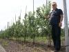 Муханин Игорь Викторович, председатель АСП-РУС в интенсивном саду с высокой агротехникой