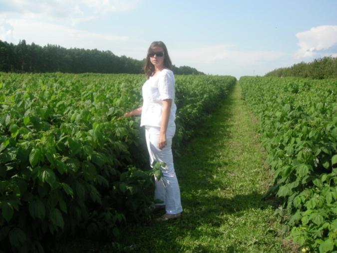 Жбанова О.В. на плантации малины
