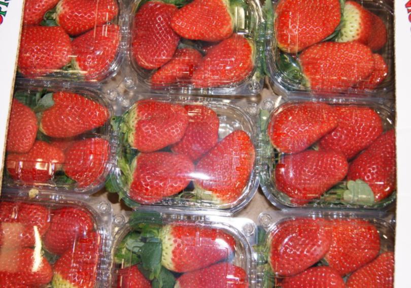 Упаковка для свежей ягоды земляники