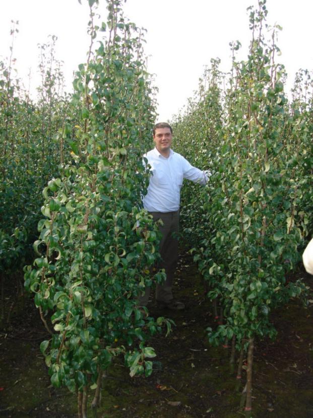 """Koen Carolus (фирма\""""Каролюс\"""", Бельгия) в своем саду"""