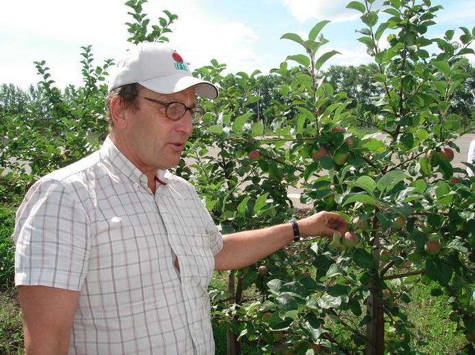 Херманович Кшиштоф (фирма «FRECH FRUIT SERVIS», Польша) у себя в саду