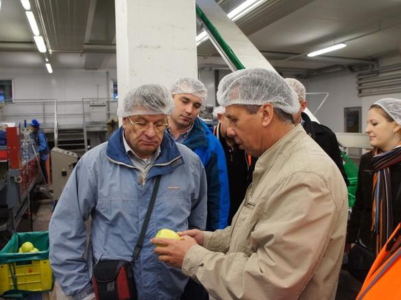 «Генералы российского садоводства» обсуждают качество плодов, прошедших многоступенчатый отбор.
