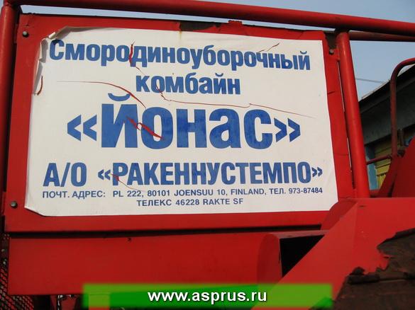jonas-realizaciya_rys_02