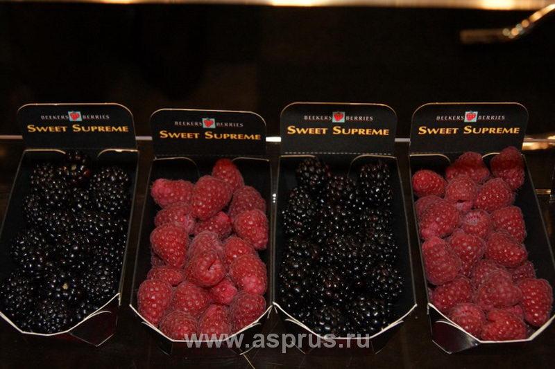 Качественные ягоды малины и ежевики