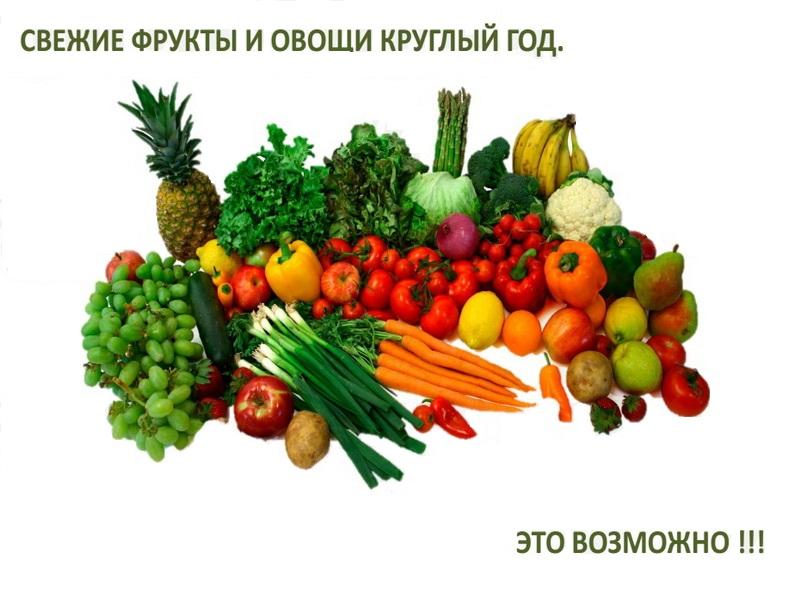 Современные хранилища для овощей и фруктов Технологии из Австрии  для овощей и фруктов Технологии из Австрии