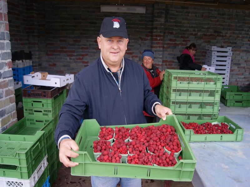 Выращивание ягод в промышленных масштабах 47