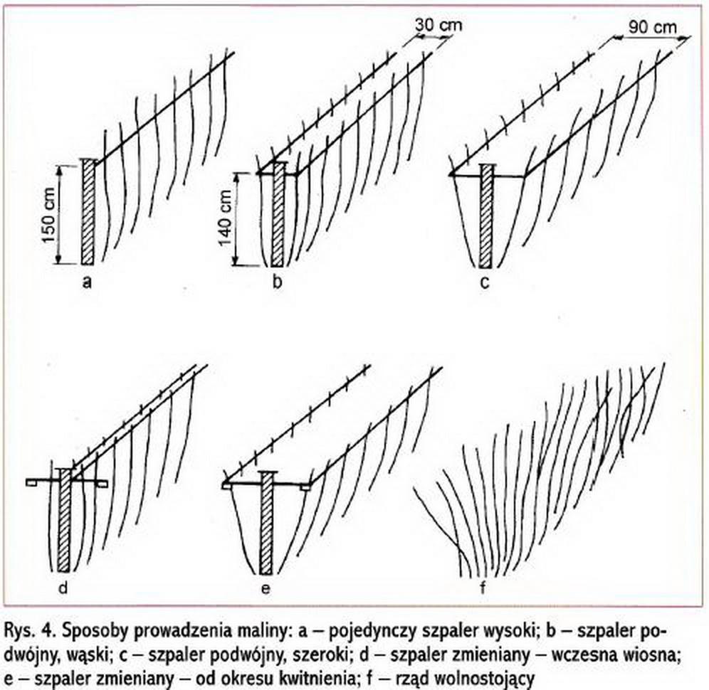 двустрочной или однострочной схеме посадки