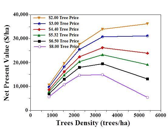Себестоимость сада после 20 лет в зависимости от числа посаженных деревьев (Robinson и др. 2005