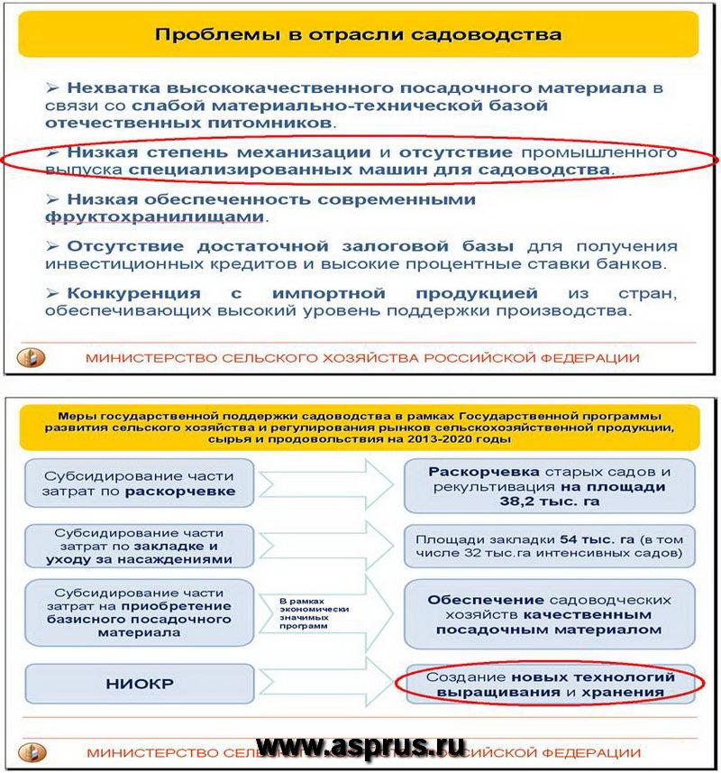 Из выступления Чекмарева П.А.