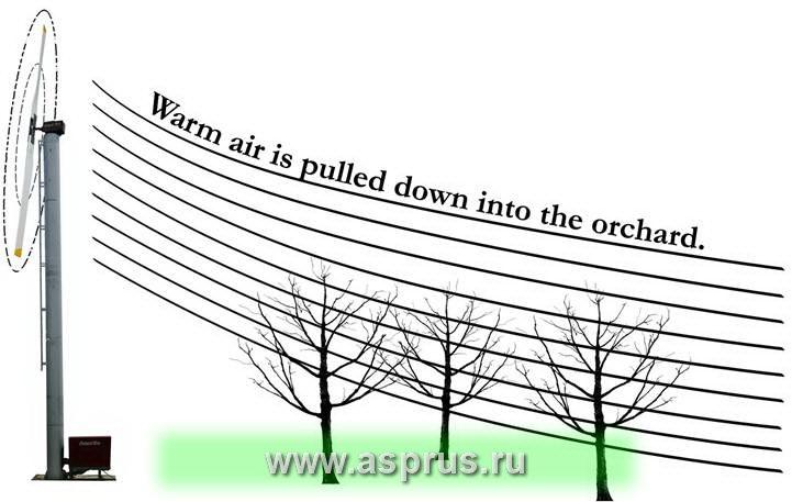 машины, морозы, сад, сорт, защита сада, защита яблони, защита плодовых растений, защита растений,