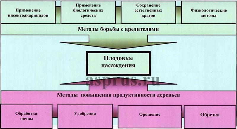 Рисунок 4 — Схема технологии