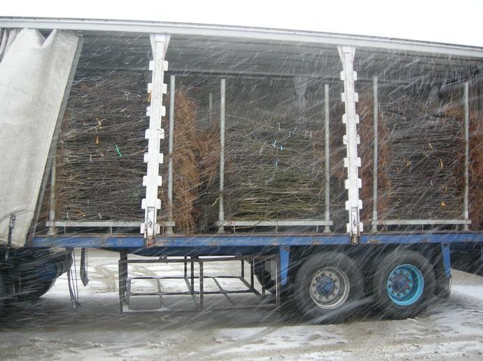 Машина для перевозки посадочного материала