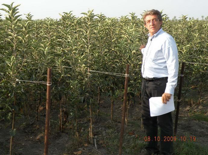 Dr. Giovanni Zanzi, главный агроном ПЛОДОВОГО ПИТОМНИКА «VIVAI F.Iii ZANZI»