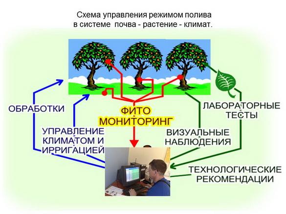 tehnologii_poliva_sad-gigant_2012_25