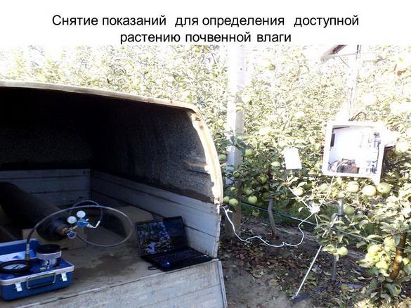 tehnologii_poliva_sad-gigant_2012_28