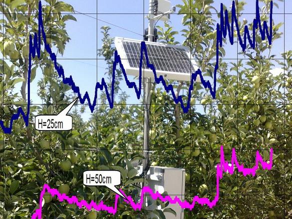 tehnologii_poliva_sad-gigant_2012_29
