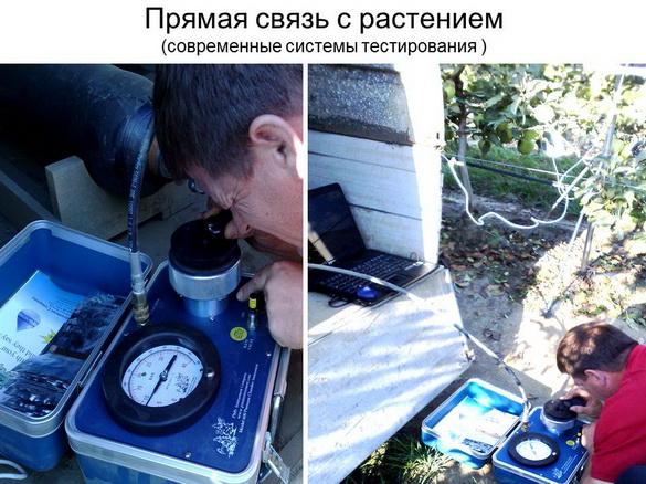 tehnologii_poliva_sad-gigant_2012_33