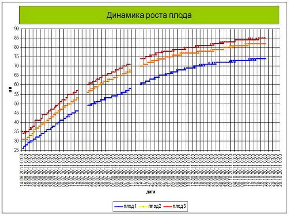 tehnologii_poliva_sad-gigant_2012_38