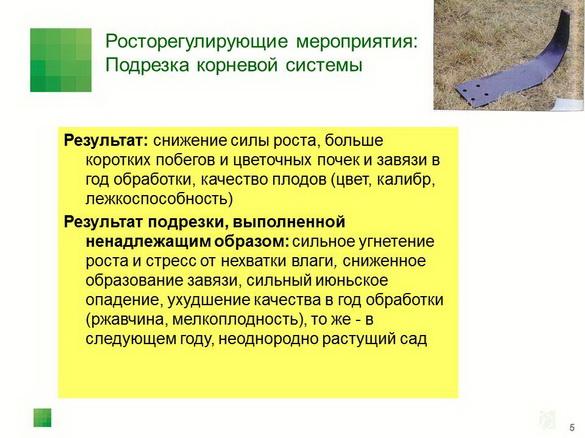 tehnologiya_sada_sad-gigant_pr_2012_04