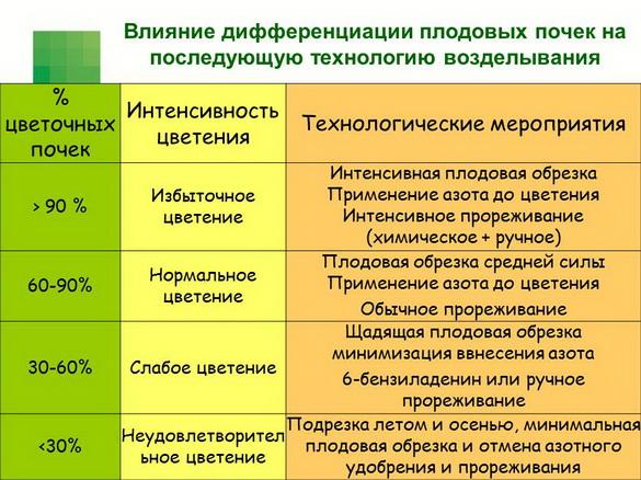 tehnologiya_sada_sad-gigant_pr_2012_06