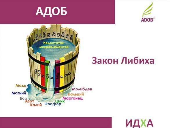 adob_rus_pr_04_1