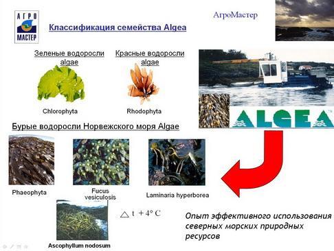 agromaster_pr_02_1.jpg