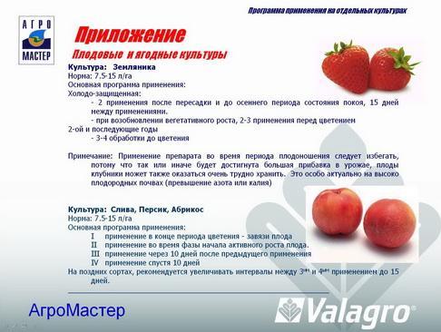 agromaster_pr_08_1.jpg