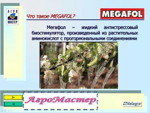 agromaster_pr_22_1.jpg