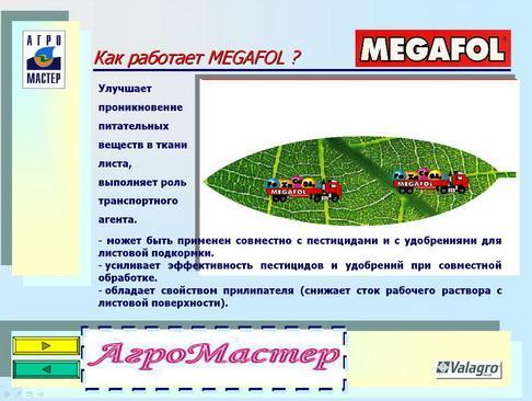 agromaster_pr_23_1.jpg