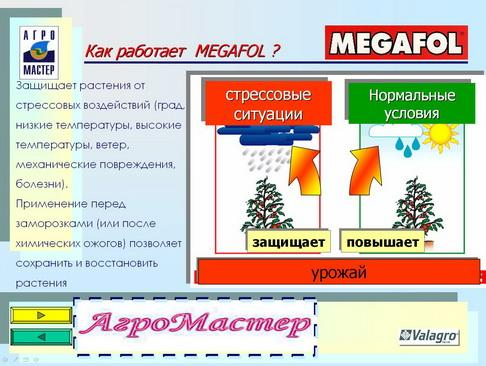 agromaster_pr_24_1.jpg