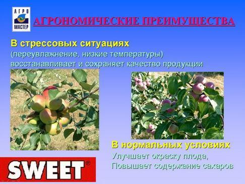 agromaster_pr_43_1.jpg