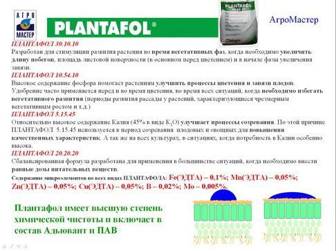 agromaster_pr2_08_1.jpg