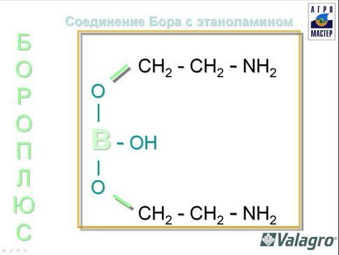 agromaster_pr2_10_1.jpg
