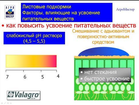 agromaster_pr2_24_1.jpg