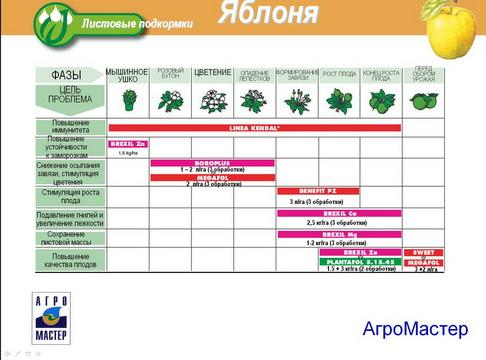 agromaster_pr2_25_1.jpg