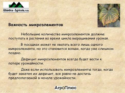 agroplus_pr_03_1.jpg