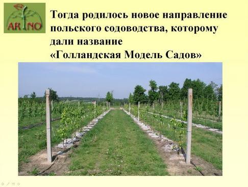 arno_plodpitomnik_pr_05_1.jpg
