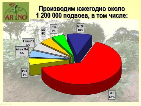 arno_plodpitomnik_pr_09_1.jpg