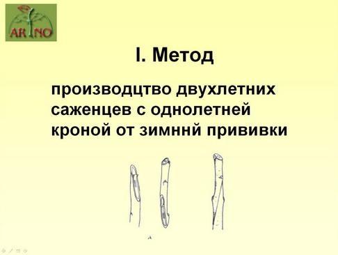 arno_plodpitomnik_pr_16_1.jpg