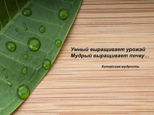 azotovit_i_fosfovit_pr_01