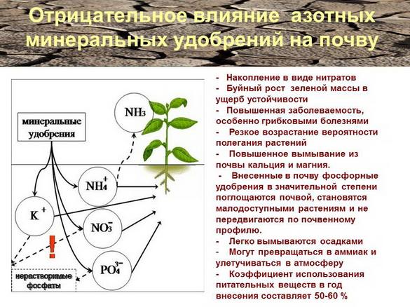 azotovit_i_fosfovit_pr_03