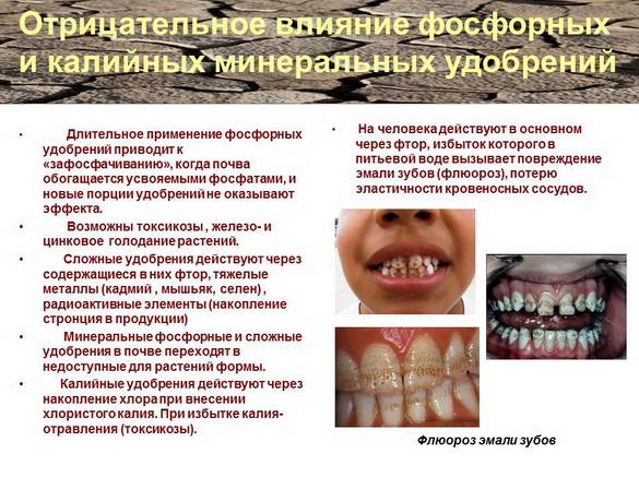 azotovit_i_fosfovit_pr_05