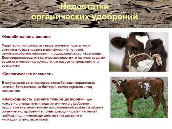 azotovit_i_fosfovit_pr_06