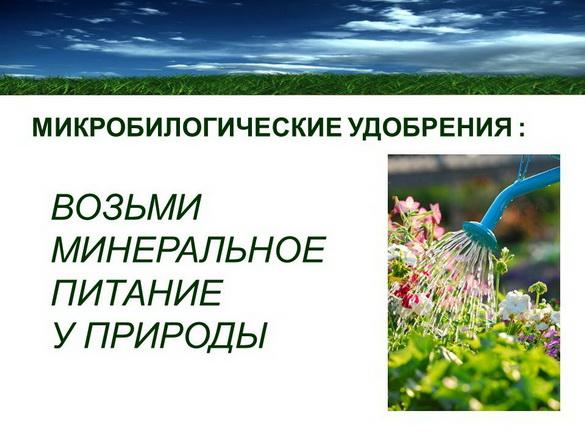 azotovit_i_fosfovit_pr_08