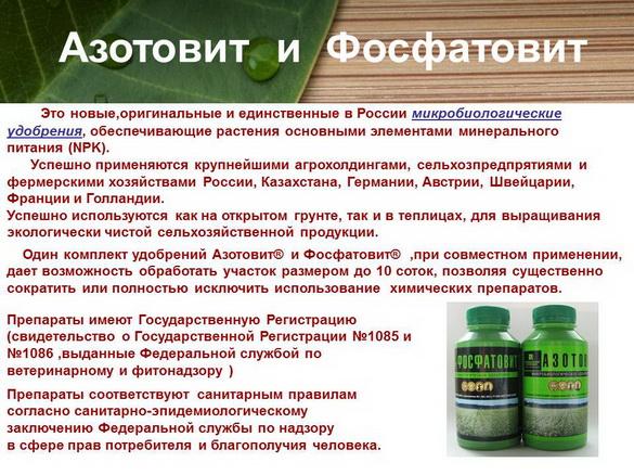 azotovit_i_fosfovit_pr_10